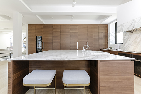Slab Kitchen Cabinets